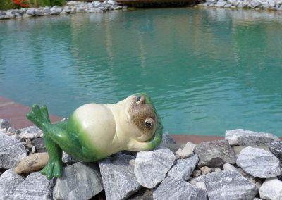 Keramikfrosch am Naturpool