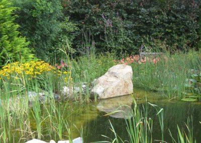 Findling im Teich