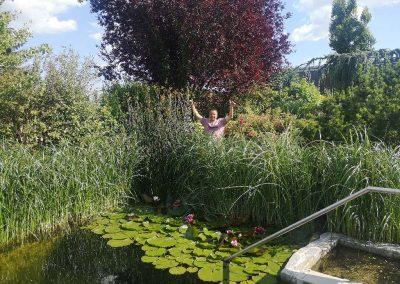 Schwimmteich mit Garten anbei