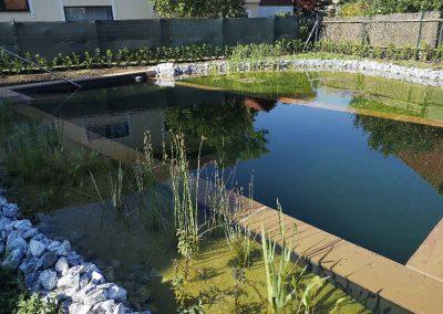Schwimmteich mit Schalsteinmauer