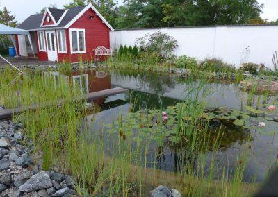 Erdmodellierter Schwimmteich neben dem Haus