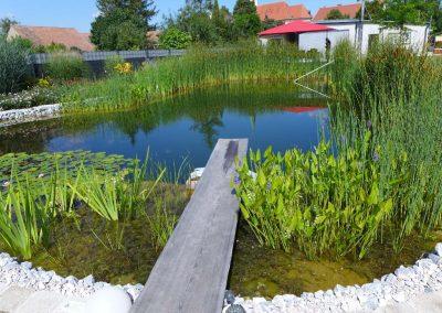 Sprungbrett in den Schwimmteich