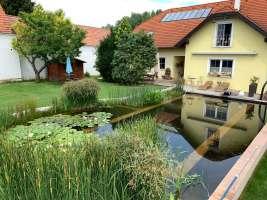Schwimmteich Selbstbau in Maria Elend